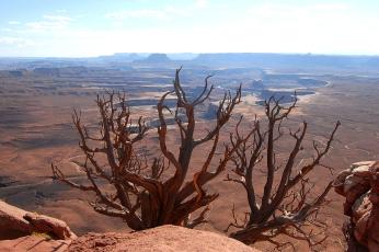 Nature_Landscapes_Canyonlands