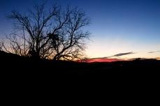 Nature_Landscapes_SunsetOregon